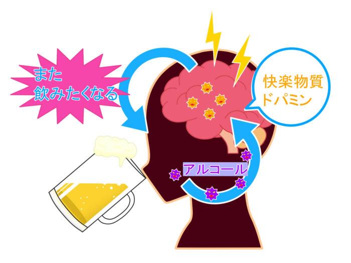 ①ドーパミン   ➡︎パウロ