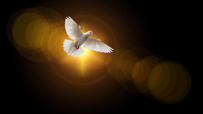 聖霊とは?